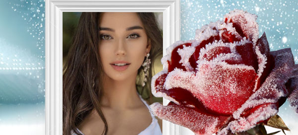 Wonderful rose frame with snowflake for you, get it now!
